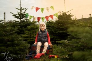 glencullen-christmas-tree-farm-dublin-christmas-experience-child-and-family-photography-3