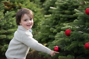 Christmas tree farm Dublin Child photography