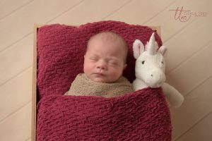 Baby with Unicorn Newborn baby photography Dublin Meath Kildare Wicklow